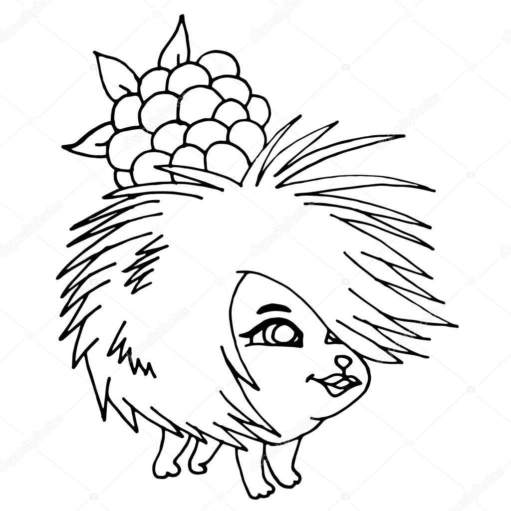 1024x1024 Hedgehog Cartoon. Hedgehog Cute. Hedgehog Cartoon. Hedgehog Cute