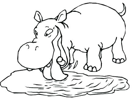 440x330 Hippo Coloring Pages Hippo Coloring Pages Cute Baby Hippo Coloring