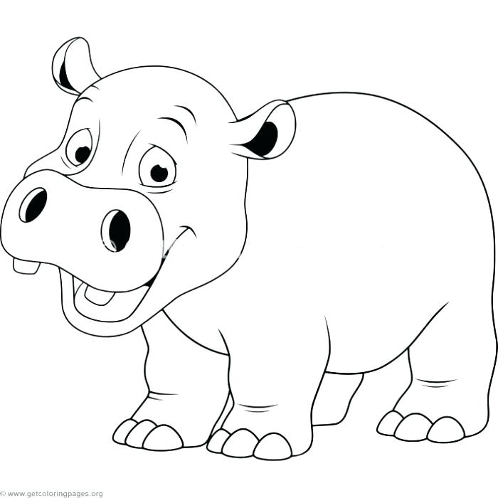 Cute Hippo Drawing at GetDrawings   Free download