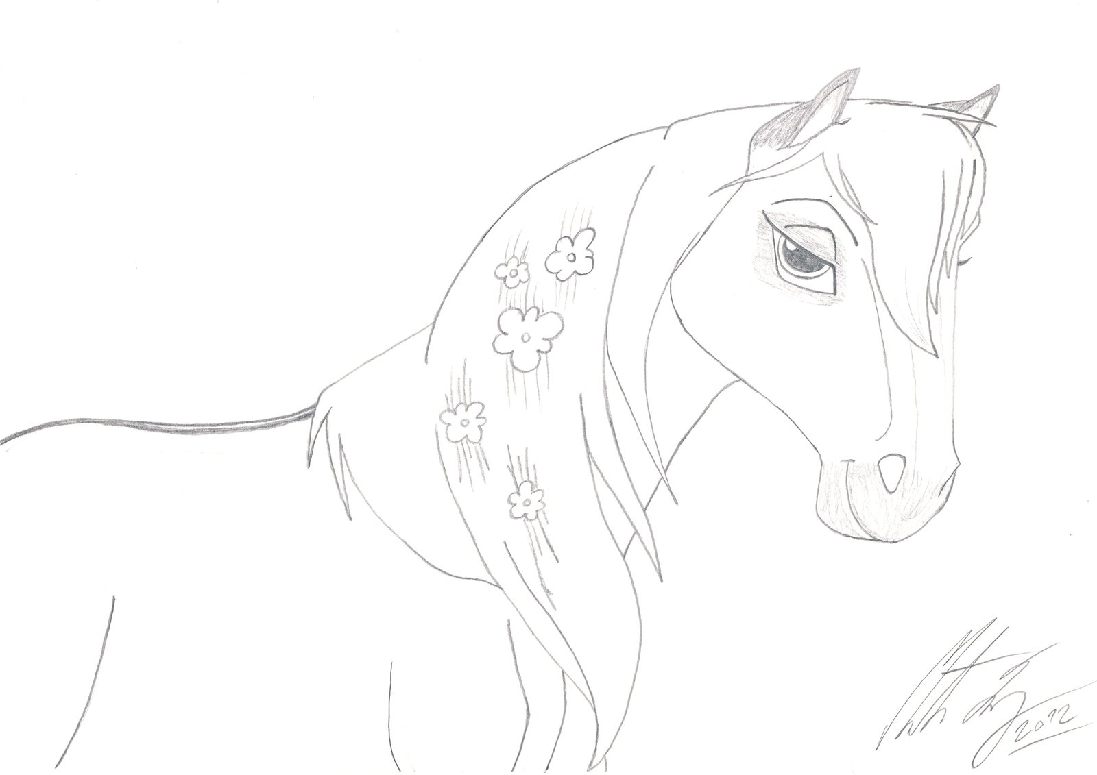 Cute Horse Drawing At Getdrawings Com Free For Personal