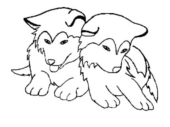 printable husky dog coloring pages | Cute Husky Drawing at GetDrawings.com | Free for personal ...