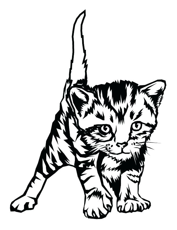 612x793 Cute Kitten Pictures To Print Kitten Printable Coloring Pages