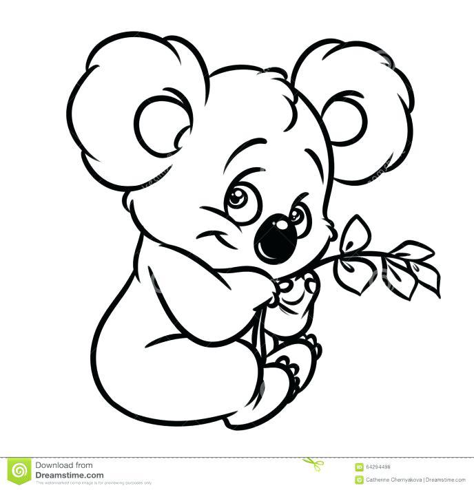 688x712 Top Rated Koala Coloring Pages Images Cute Koala Cute Koala