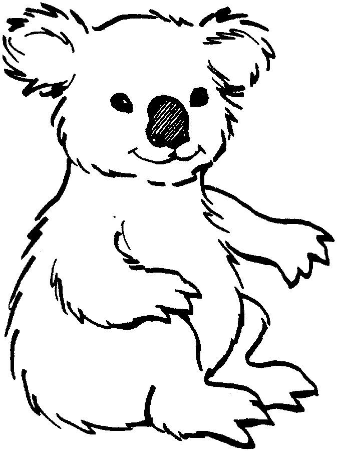 Cute Koala Bear Drawing at GetDrawings.com | Free for personal use ...