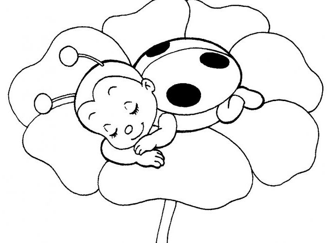 678x500 Best Cute Ladybug Coloring Pages 47 About Remodel Coloring Pages