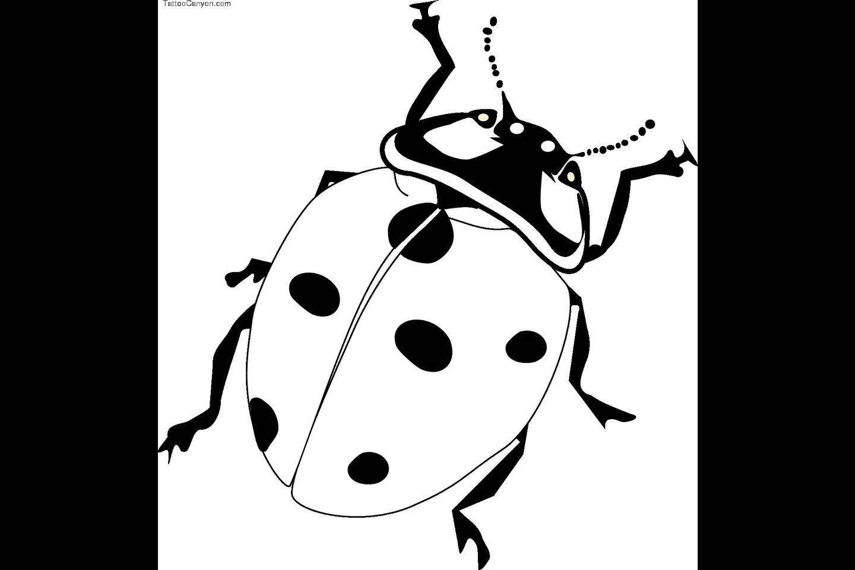 Cute Ladybug Drawing at GetDrawings | Free download