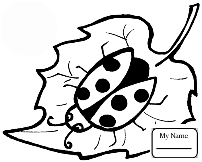 704x567 Coloring Pages Cute Ladybug Insects Ladybug