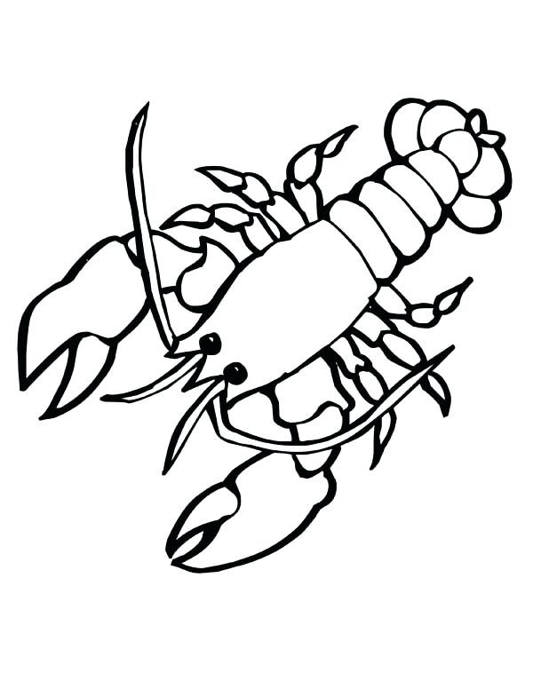 600x776 Lobster Coloring Page Giant Sea Lobster With Big Clasp Sea Animals