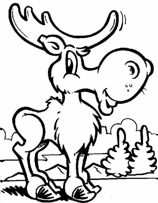 600x769 Funny Moose Coloring Page