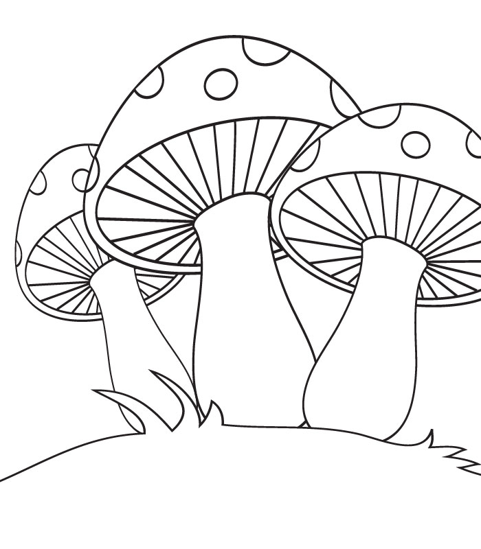 700x800 Mushrooms Coloring Pages