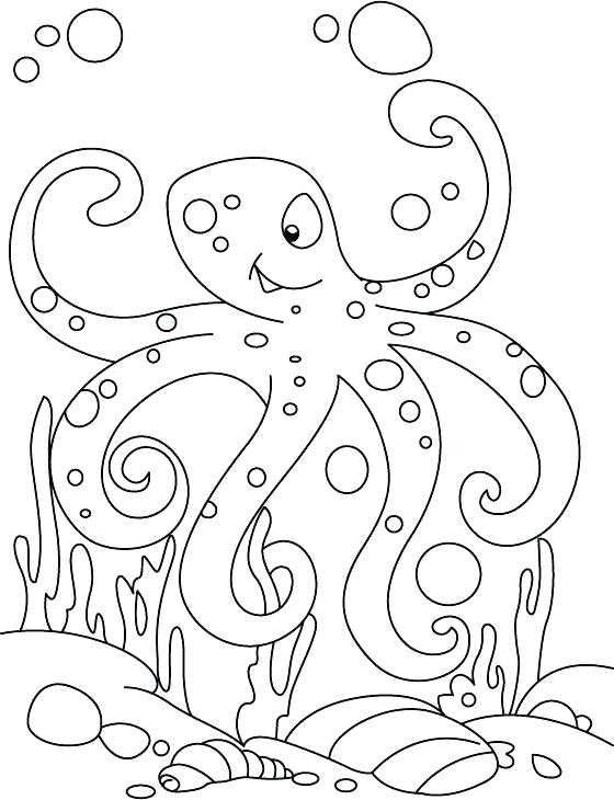 560x730 Octopus Coloring Pages Coloring Page Octopus Muscular Octopus