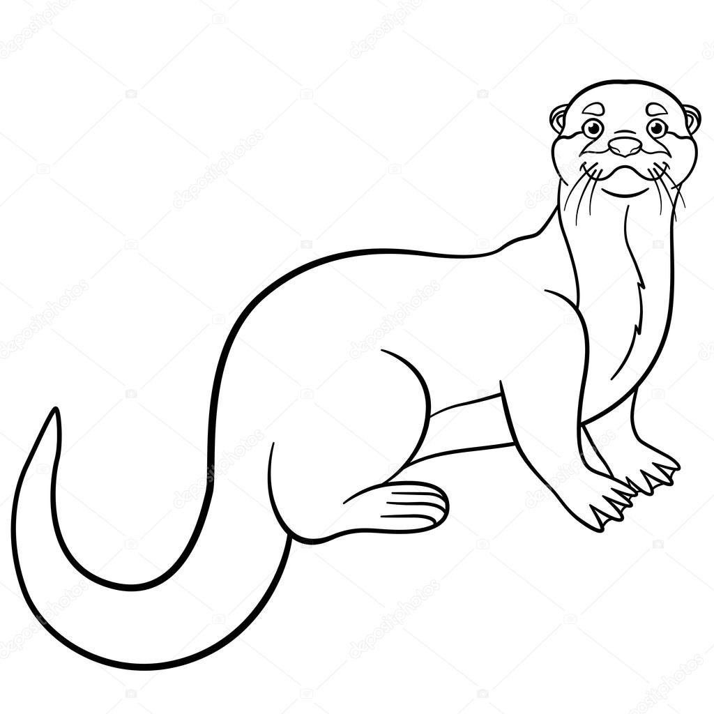 cute otter drawing at getdrawings  free download