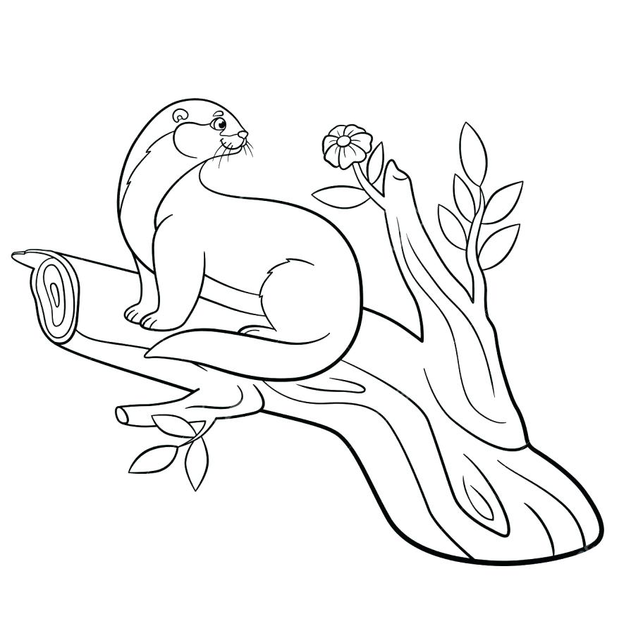 878x878 Sea Otter Coloring Pages Sea Otter Drawn 7 Baby Sea Otter Coloring