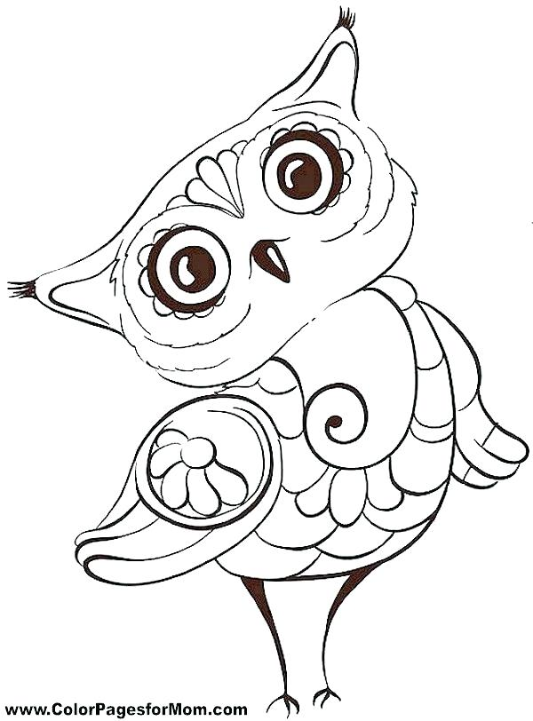 600x812 Snowy Owl Coloring Page Free Coloring Pages Of Owls Cute Owl