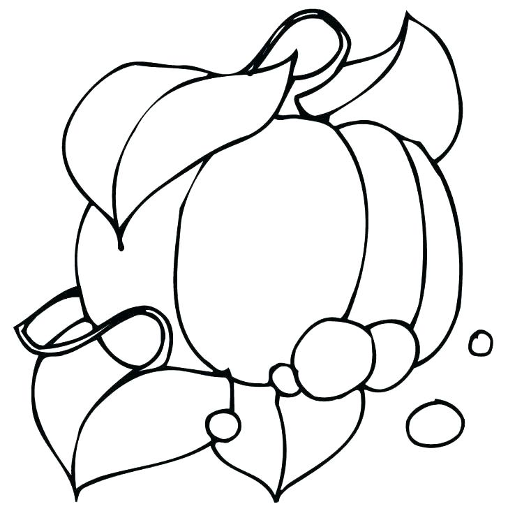 728x732 Pumpkin Coloring Pages Pumpkin Coloring Book Blank Pumpkin