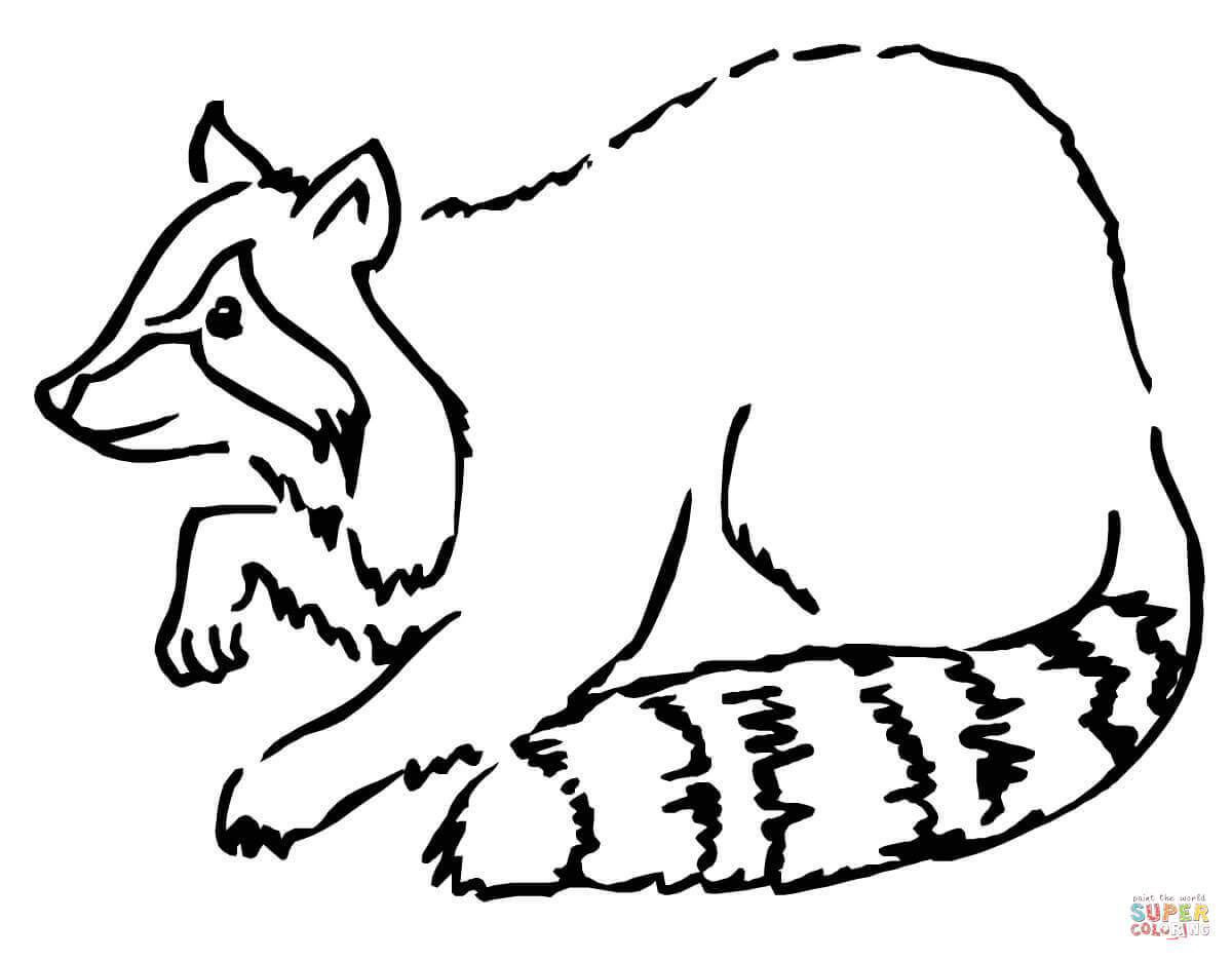 Cute Raccoon Drawing at GetDrawings.com | Free for ... Raccoon Face Coloring Pages