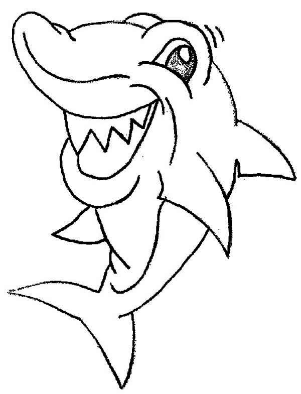 Cute Shark Drawing at GetDrawings | Free download