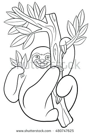 318x470 Two Toed Sloth Coloring Page Pages Cute Lazy Hangs On The Tree