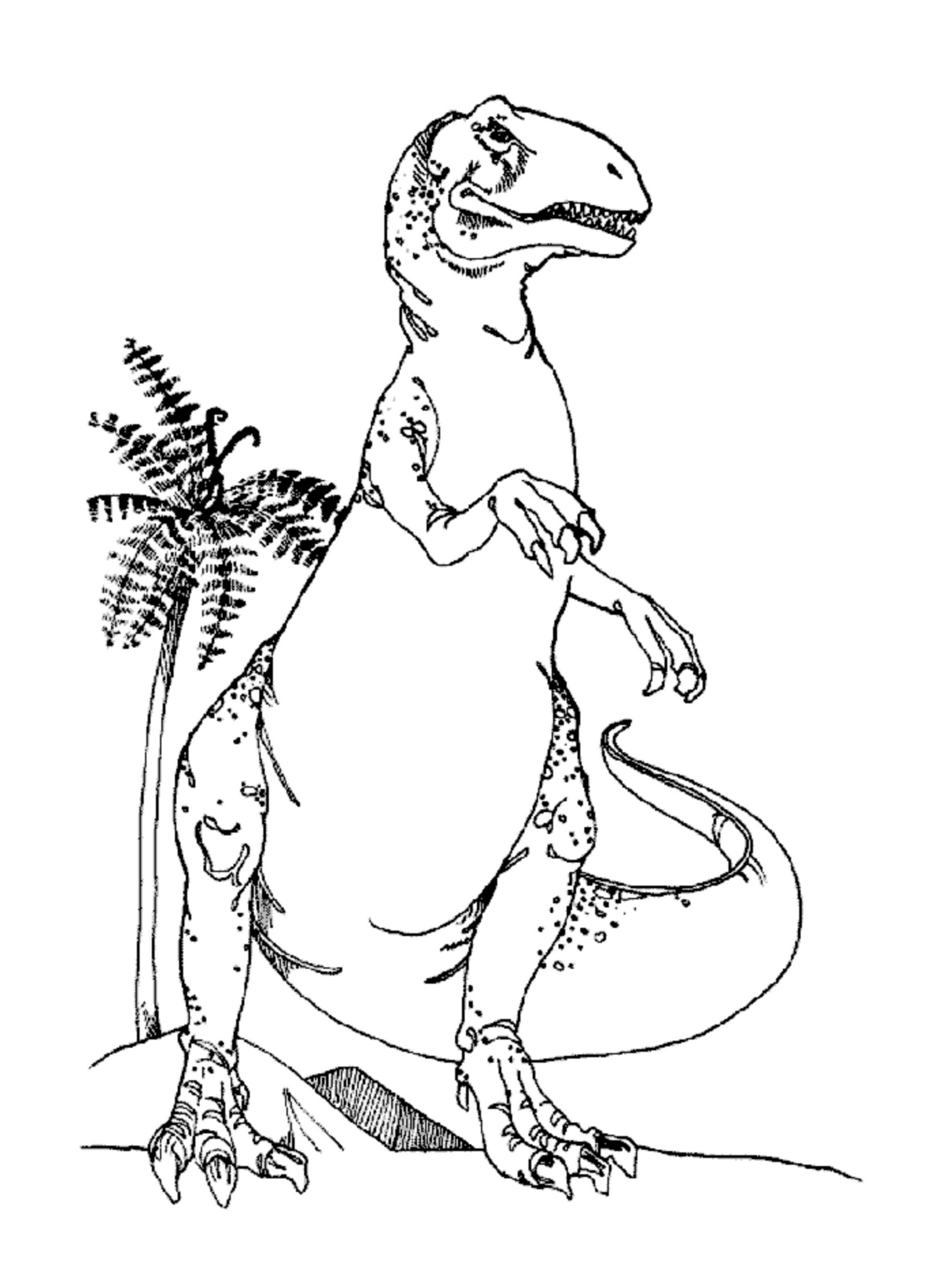 2366x3154 Little Rex Coloring Pages For Kids Luxury Drawing Little Red Hen