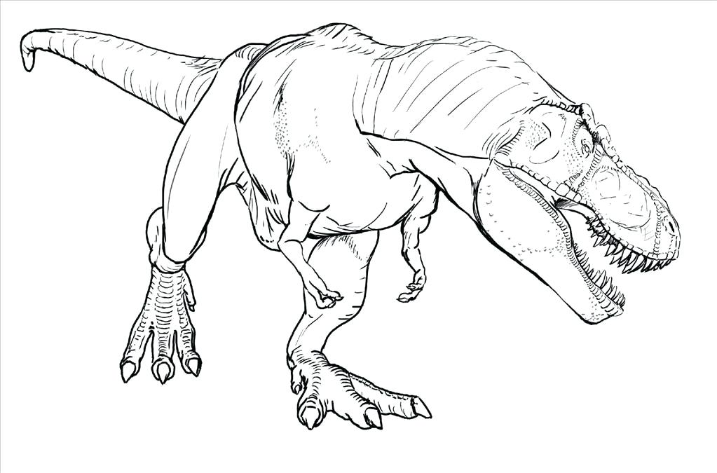 1023x675 Trex Coloring Pages T Dinosaur Coloring Pages Cute T Heart