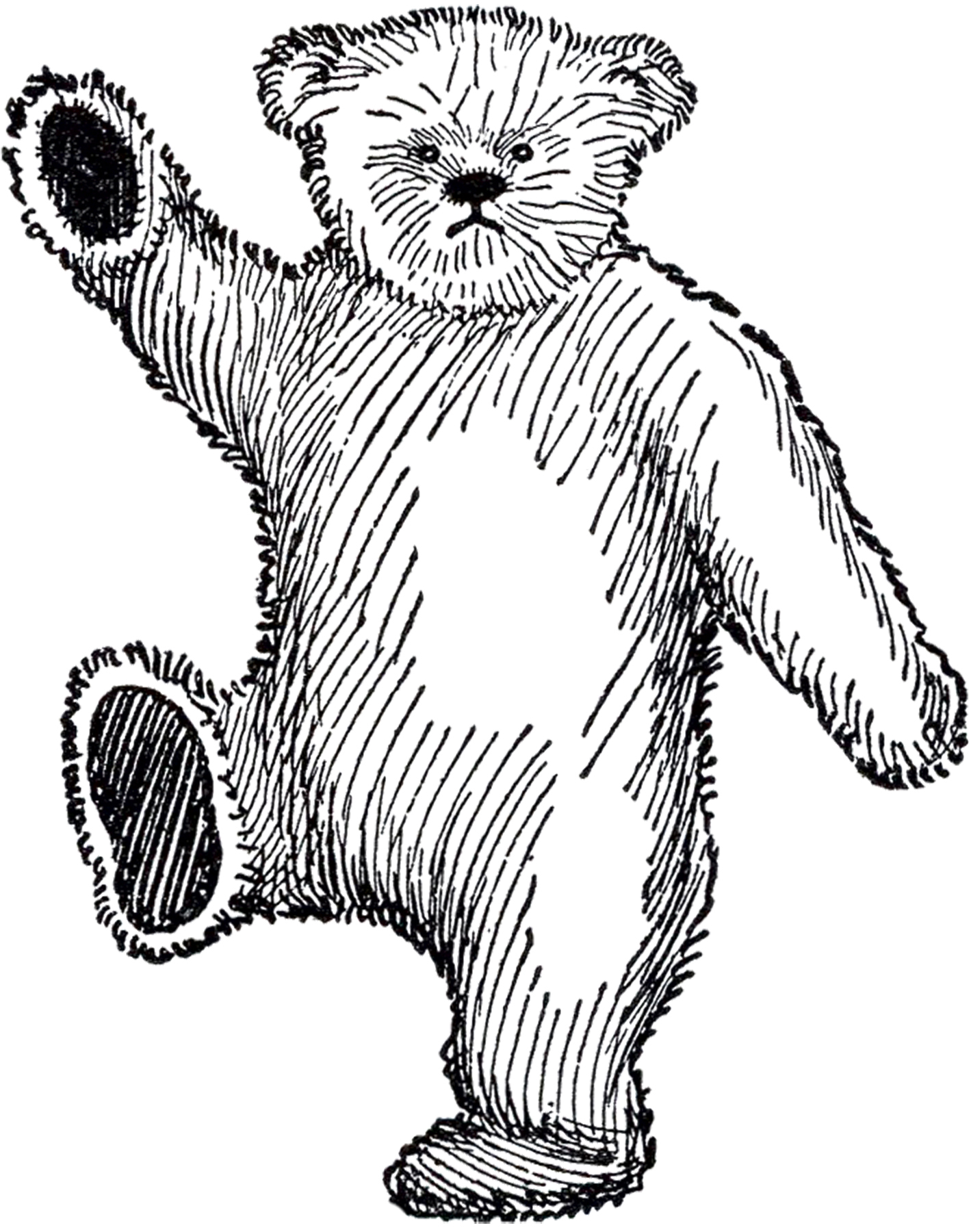 1419x1800 Public Domain Teddy Bear Image