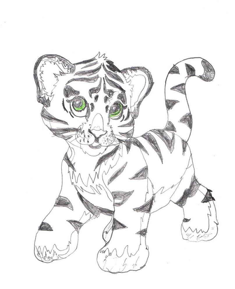 Cute Tiger Drawing at GetDrawings.com | Free for personal use Cute ...