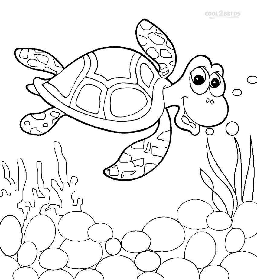 free coloring pages of a turtle | Cute Turtle Drawing at GetDrawings.com | Free for personal ...