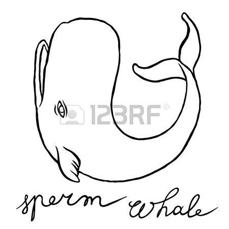 Cute Whale Drawing