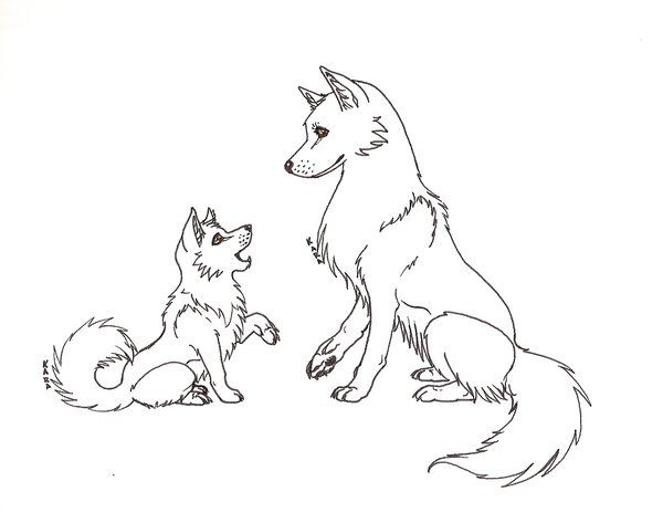600x473 Wolf Pup Drawings Wolf Pup Drawing Tutorial