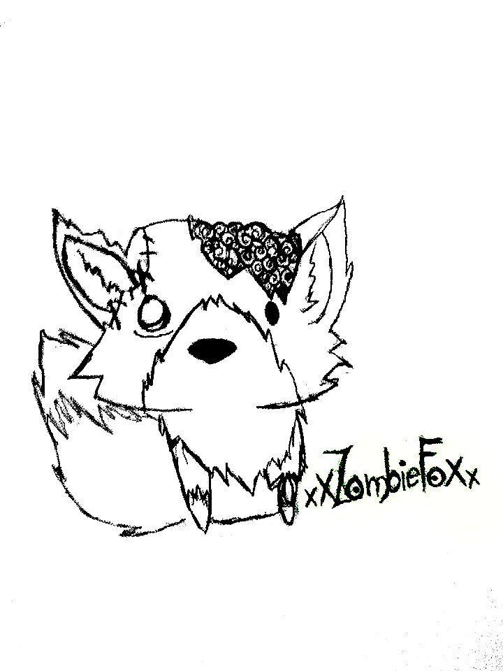 720x960 Zombie Fox Sketch By Thesqueelingfangirl