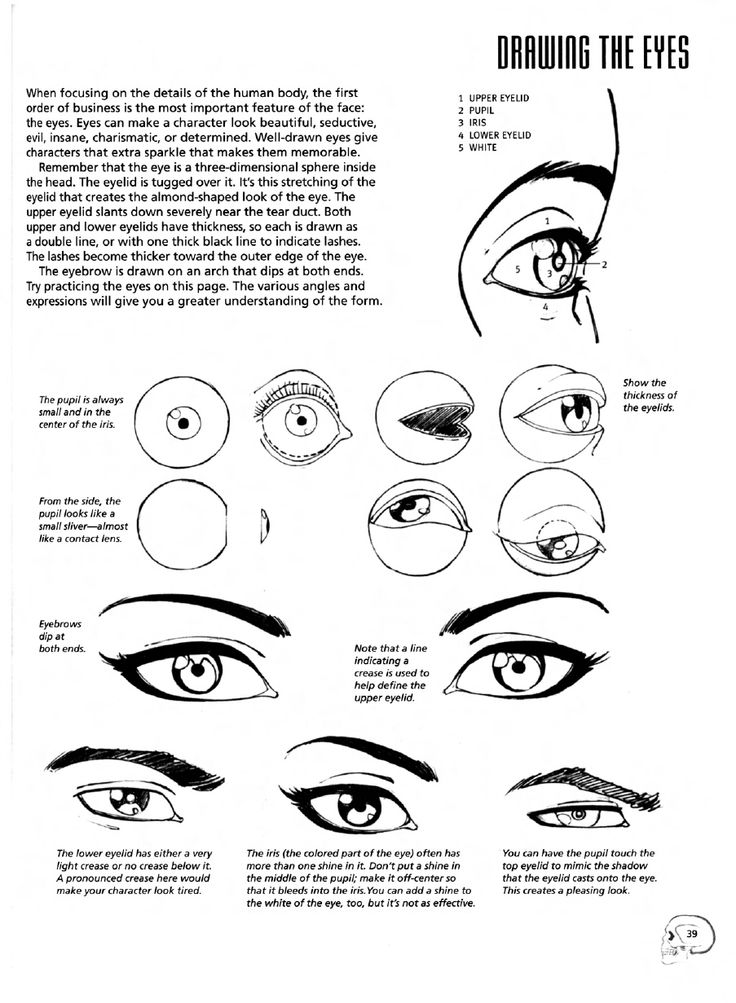 how to completely change eyebrow shape