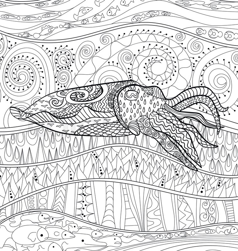 758x800 Cuttlefish With High Details. Adult Antistress Coloring Page