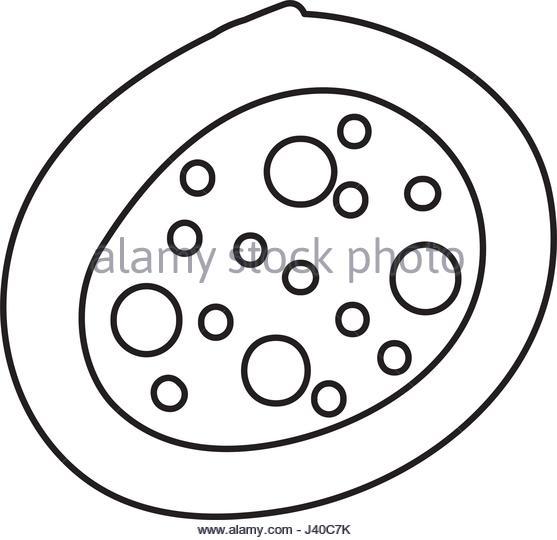 557x540 Cytoplasm Microscope Stock Photos Amp Cytoplasm Microscope Stock