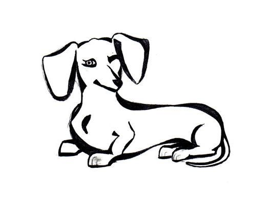 517x393 Dachshund Clube Dachshund Dachshunds, Dog And Tattoo
