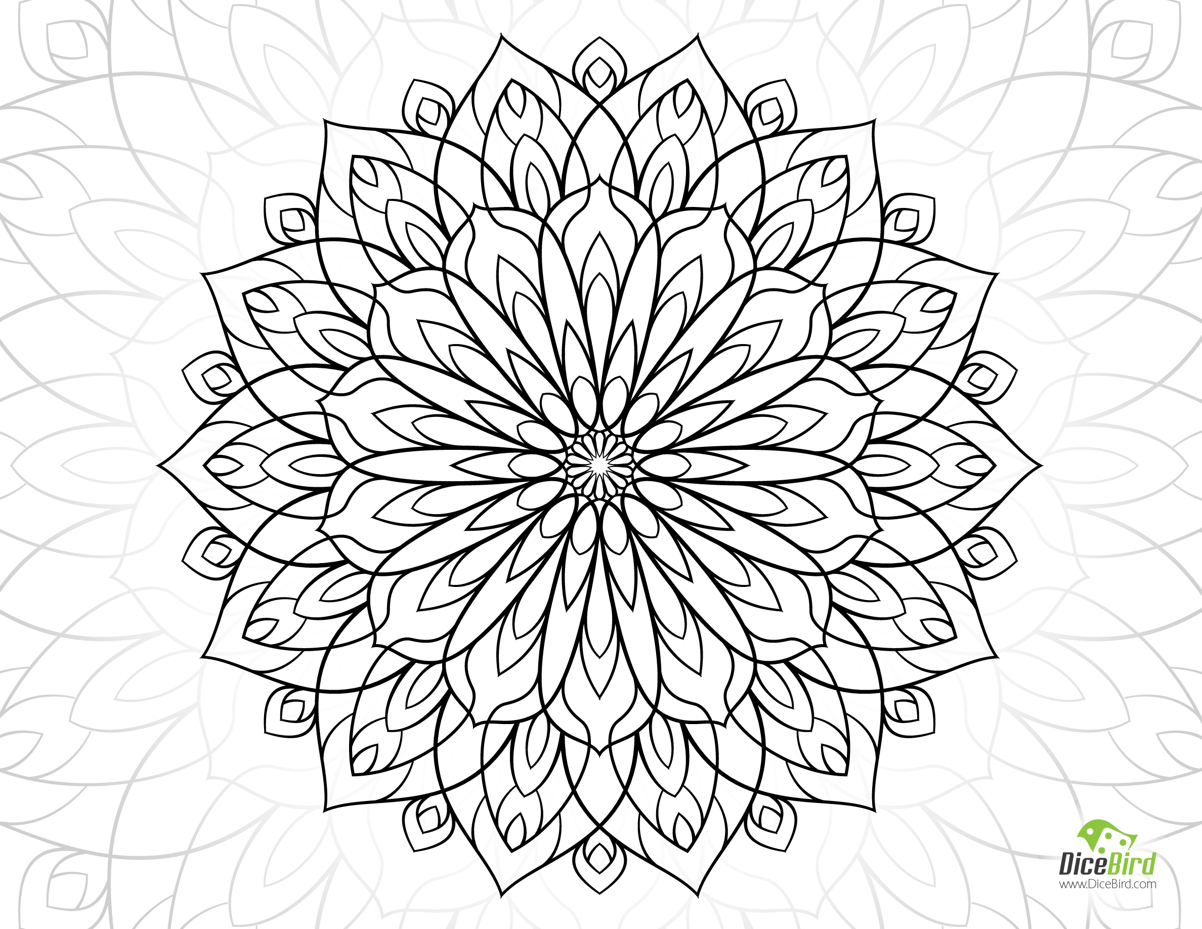 2376x1836 Flower Adult Coloring Pages Preschool To Cure Draw Image