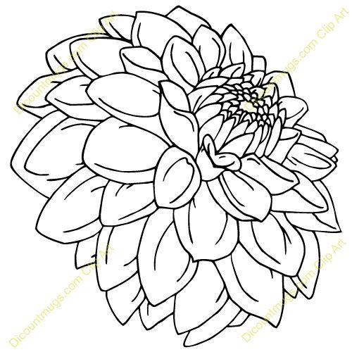 500x500 Line Drawing Dahlia Found On Flower Line