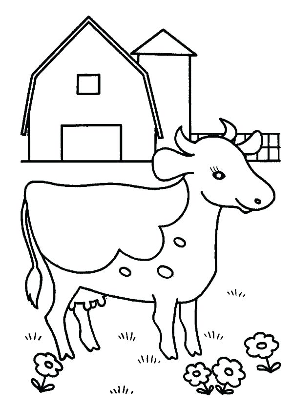 dairy cow drawing 2