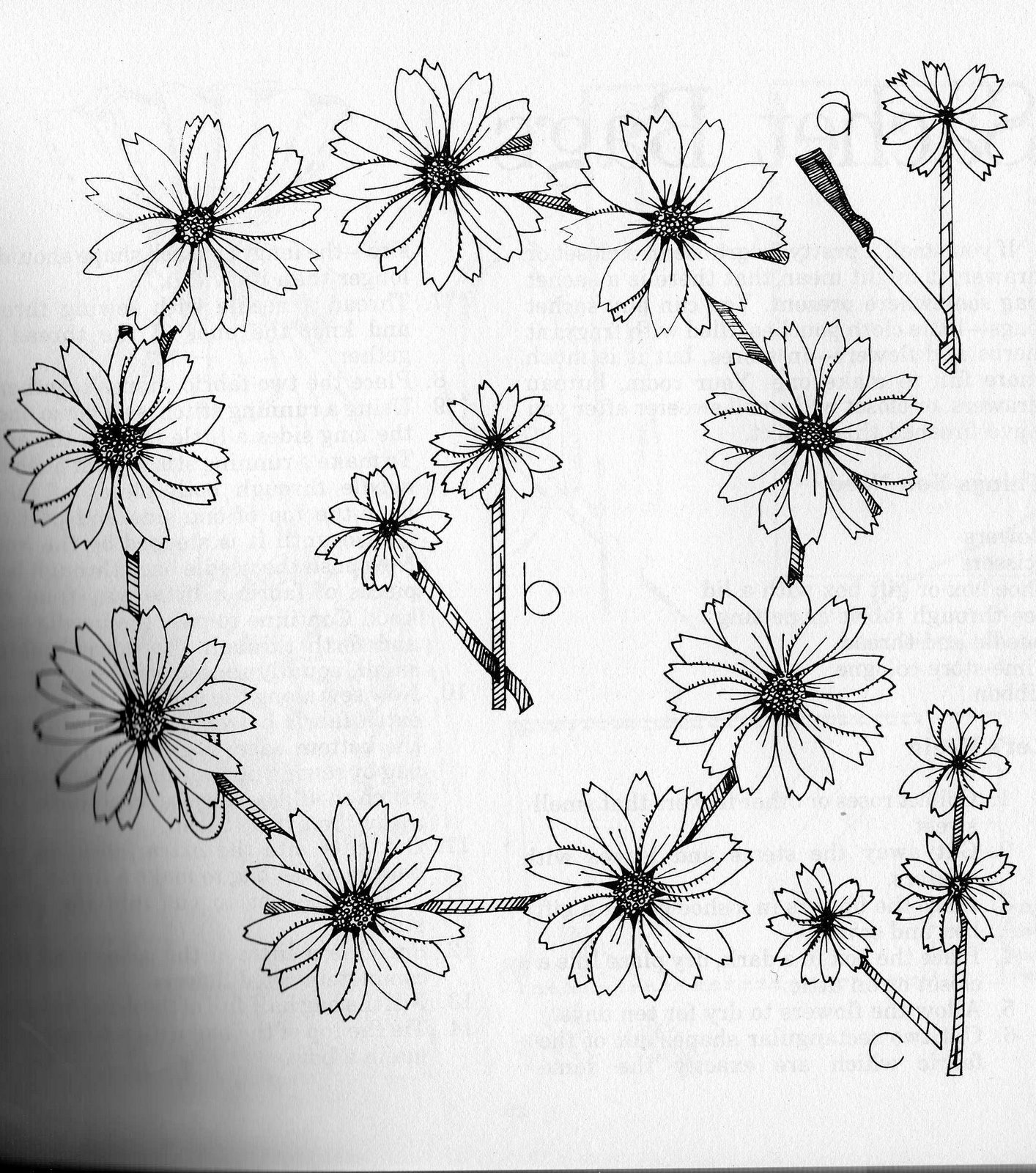 Daisy Chain Drawing At Getdrawings Com Free For Personal Use Daisy