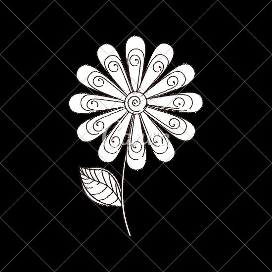 550x550 Daisy Flower Decoration Sketch