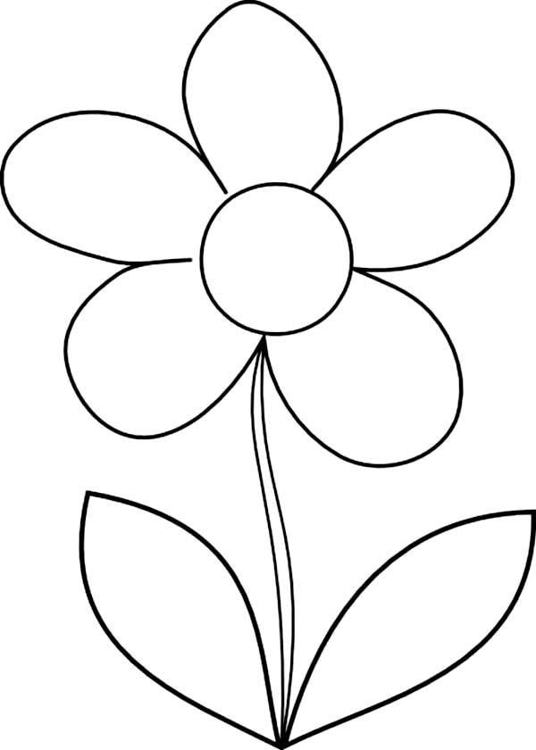 600x840 How To Draw Daisy Flower Coloring Page