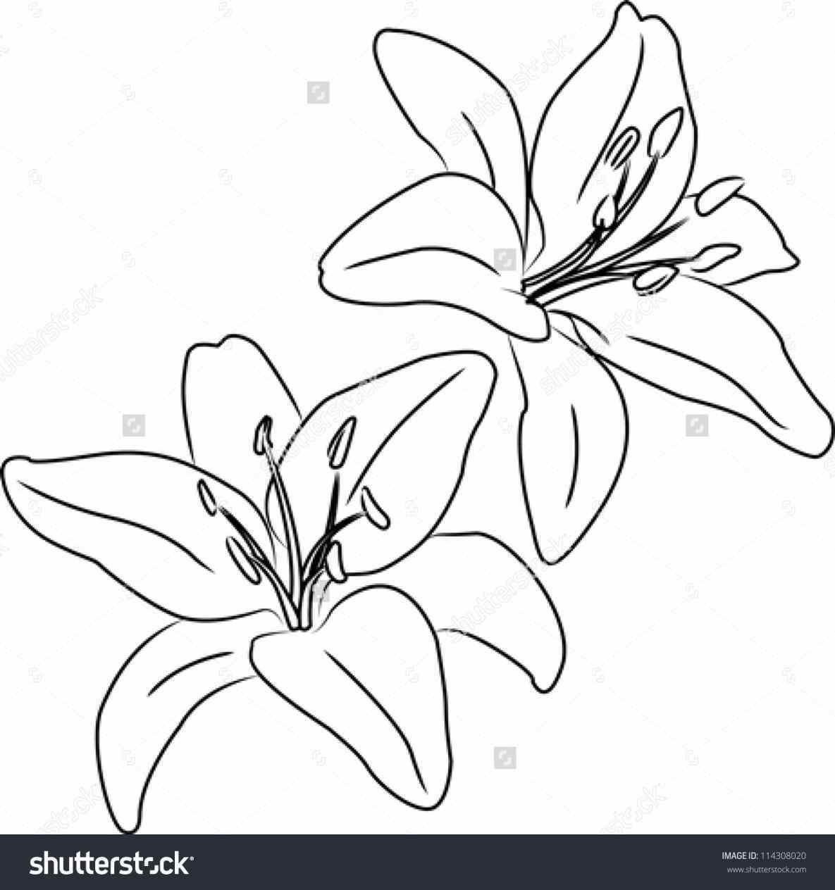 1185x1264 Daisy Flower Free Clip Art Summer Bouquet Of Grab Rose Vector
