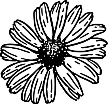381x368 Daisy Outline Free Vector Download (5,021 Free Vector)