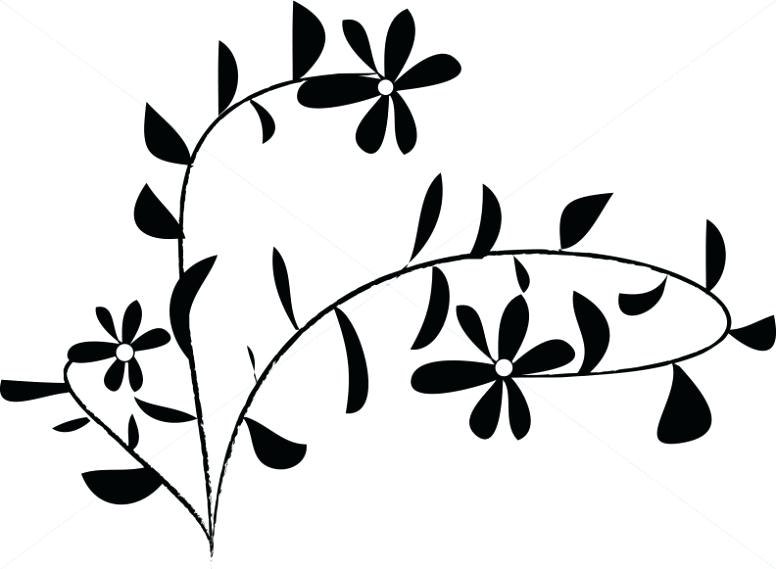 776x569 Flower Clipart Black And White Daisy Accent Daisy Flower Outline
