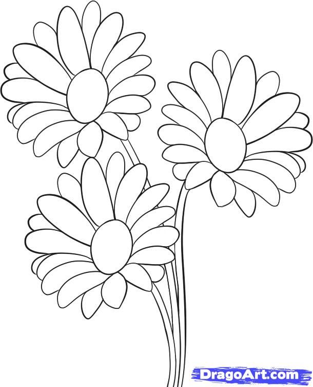 610x753 How To Draw Daisies, Step By Step, Flowers, Pop Culture, Free