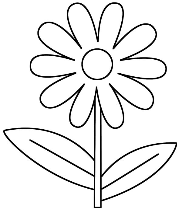 600x700 Obsession Daisy Coloring Pages Flower Outline Page Stencils
