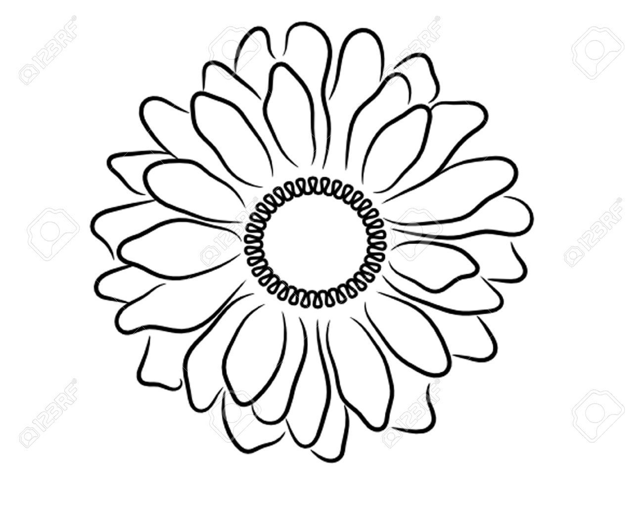 1300x1029 Black White Daisy Outline Royalty Free Cliparts, Vectors,
