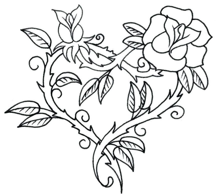863x783 Daisy Flower Outline Clip Art Tattoo Shoulder Flowers Photos