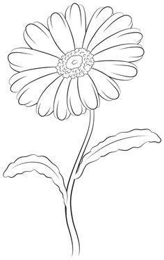 236x374 How To Draw A Daisy Step By Step Rajz Flower