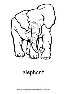 Dali Elephant Drawing