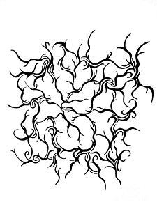 225x300 Line Dance Drawings